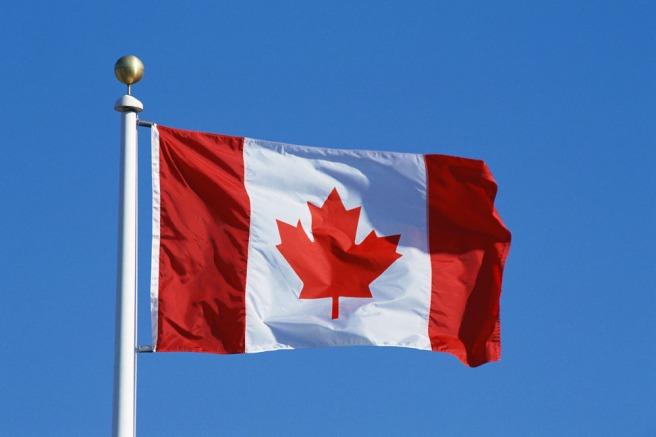 The Unbearable Niceness of Canada | Monna McDiarmid